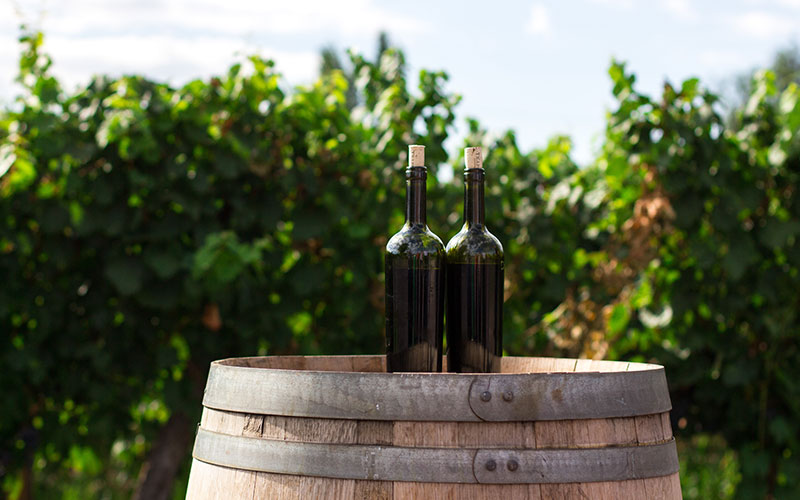 Ignition Software For Wineries