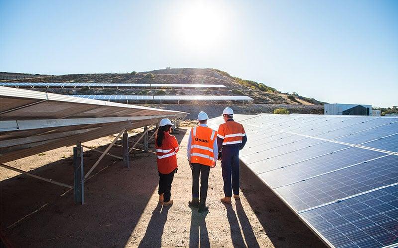sa-water-enerven-solar-farm-In-Blog-800x500