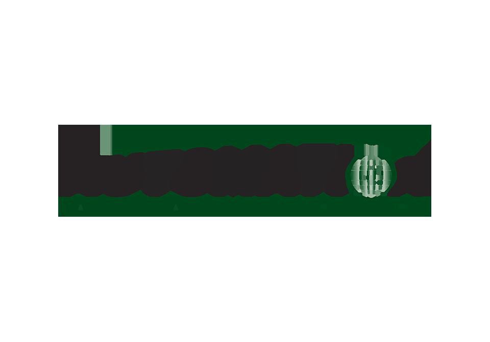 AAG.Final.logo