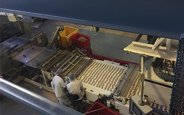 Biscuit production optimised after control system upgrade